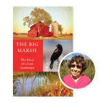 Big Marsh